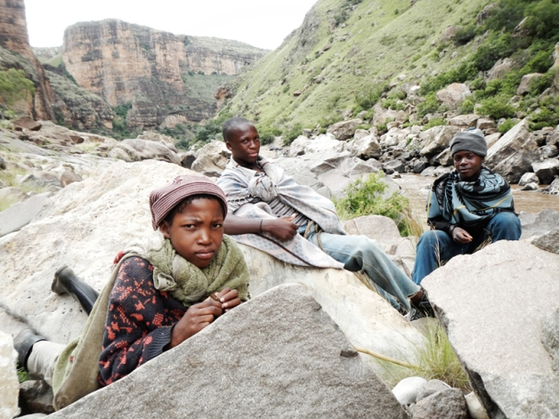 Most of the livestock in Lesotho are tended to by the young boys who look after them in the rugged mountainous terrain.